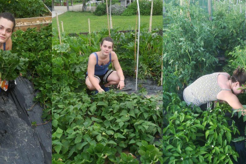 I giovani della Citifarmers… Carlotta neo perito agrario
