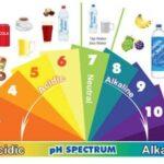 il pH  nella coltivazione in orto
